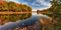 Фото: lite.35photo - 27Region.Ru